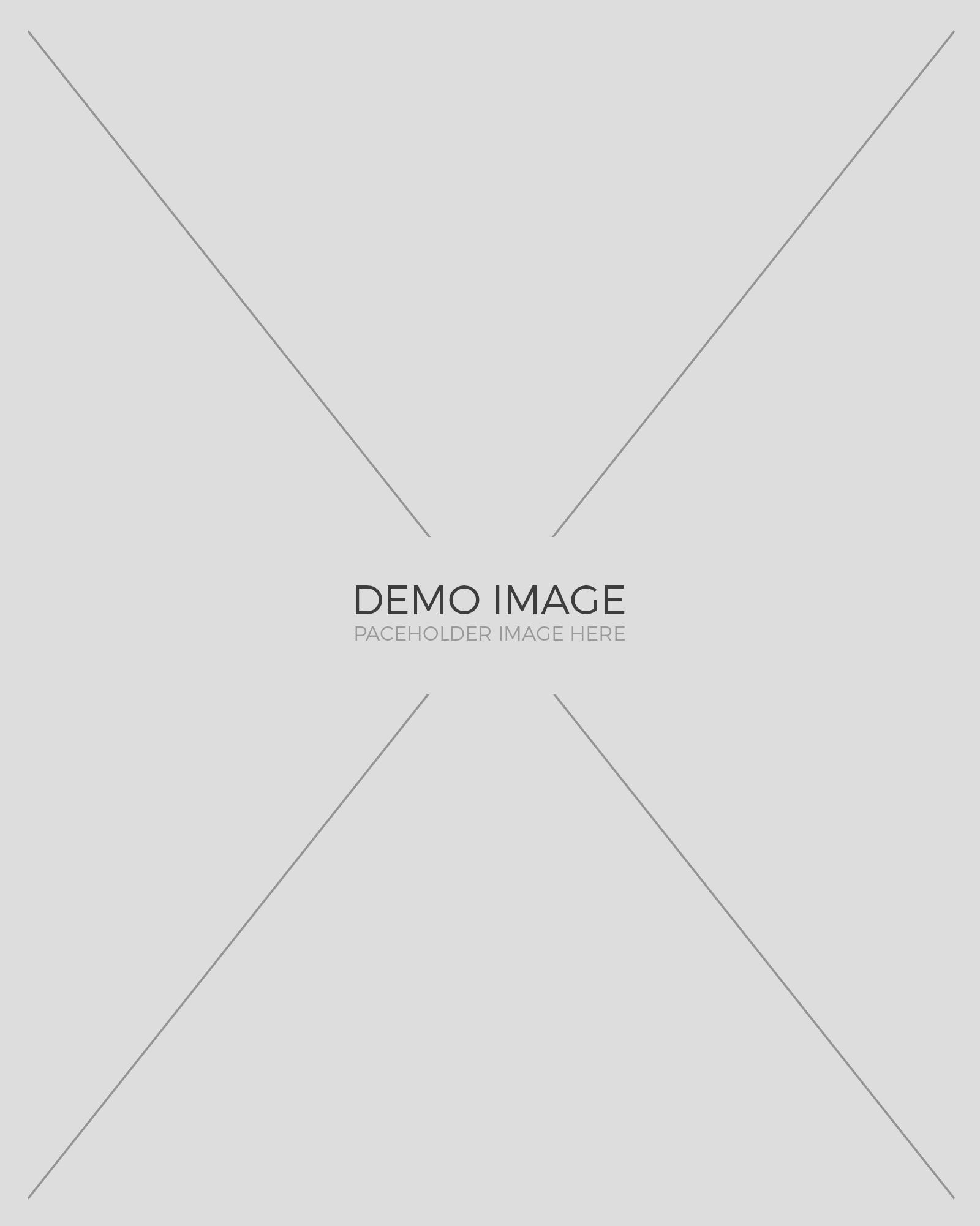 demo-img-3 3
